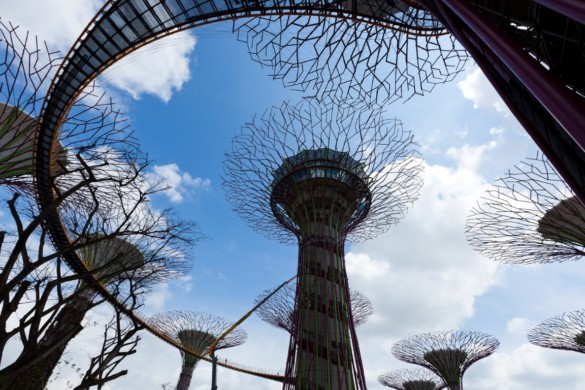 Gardens by the Bay - IGS Magazine - Architecture - Grant Associates - 18