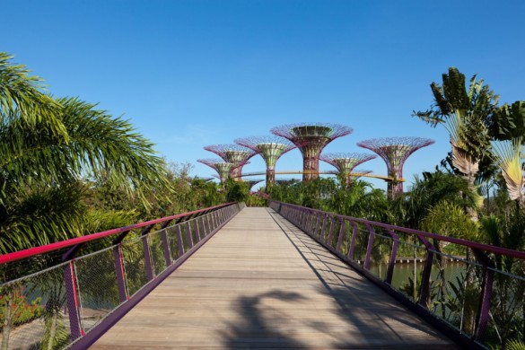 Gardens by the Bay | Grant Associates