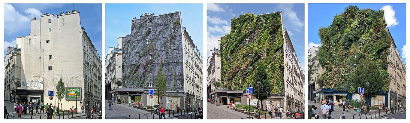 Green Walls - How Technology Brings Nature Into Architecture - IGS Magazine - opinion - 12
