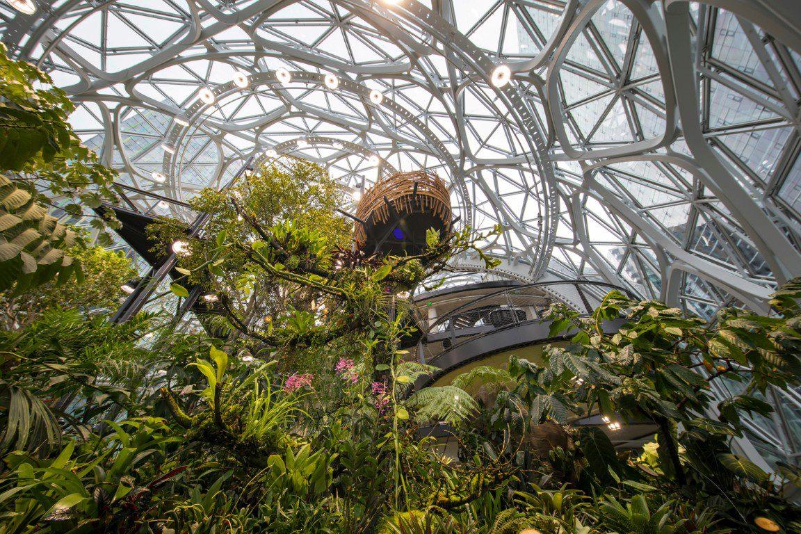 Amazon Spheres_NBBJ_IGS Magazine_Projects_Architecture_6