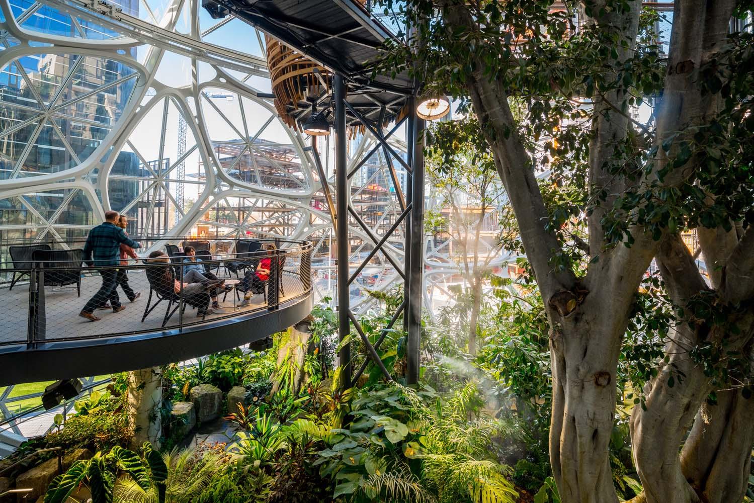 Amazon Spheres Seattle WA