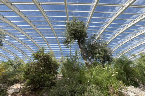 Great Glass house_Foster and partners_IGS Magazine_6