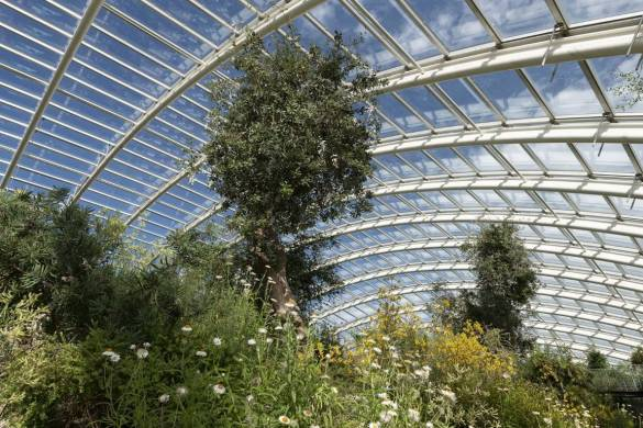 Great Glass house_Foster and partners_IGS Magazine_7