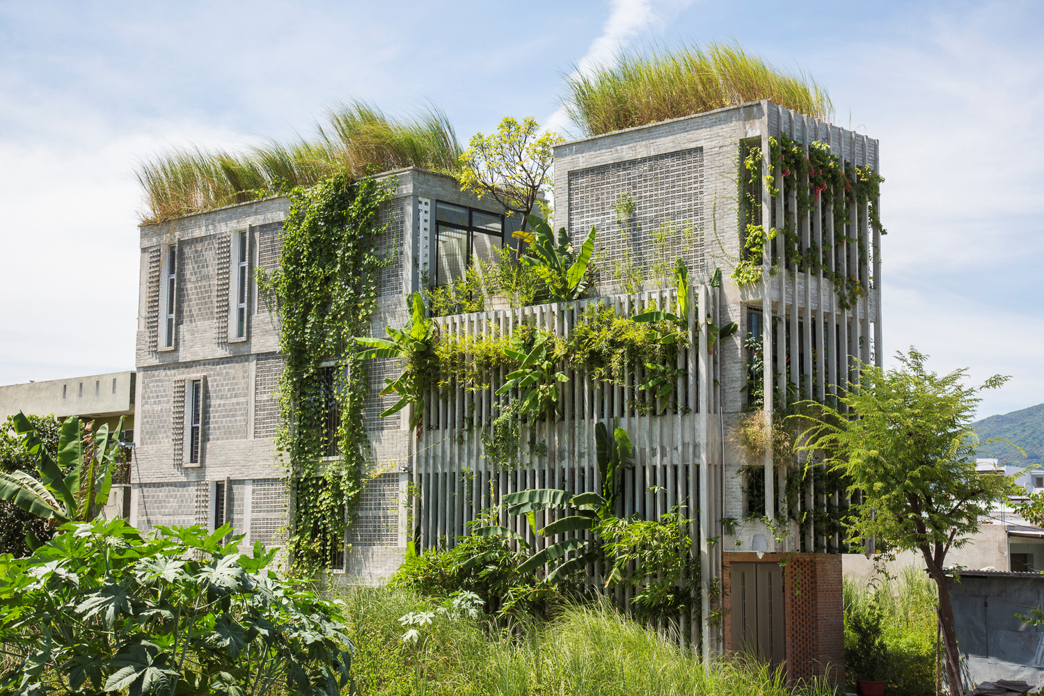 The Modern Village Office-Ho Khue Architects-IGS Magazine-Permeable facades