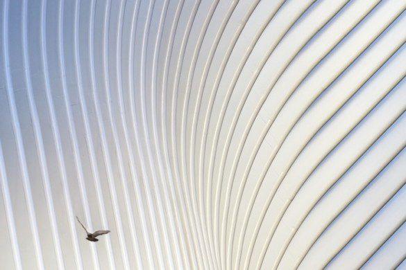 World Trade Center Transportation Hub- Santiago Calatrava - IGS Magazine - 38