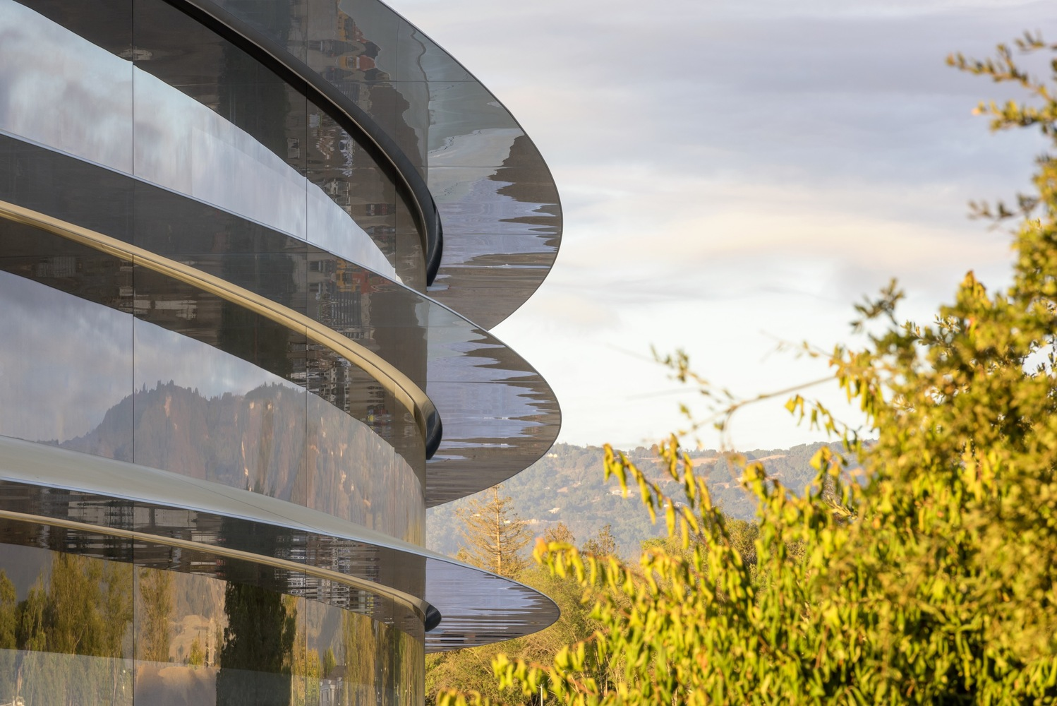 apple-park-photo-1-building-trees-igs magazine