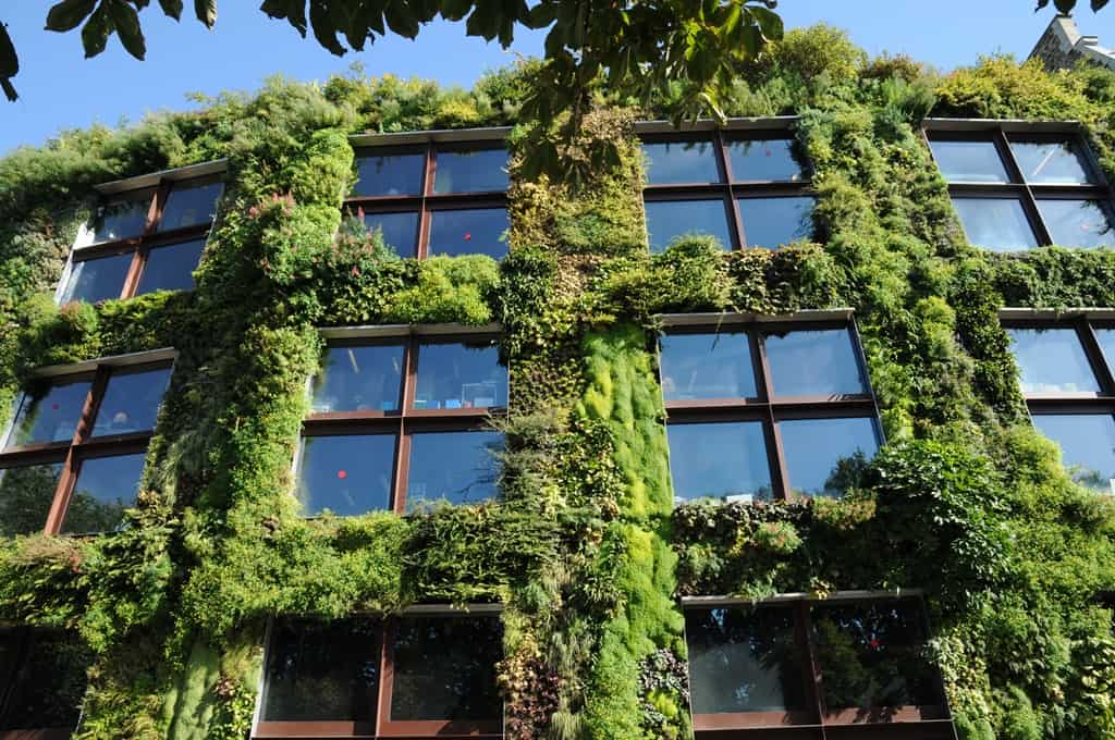 How Vertical Gardens Are Greening Europe S Cities Igs