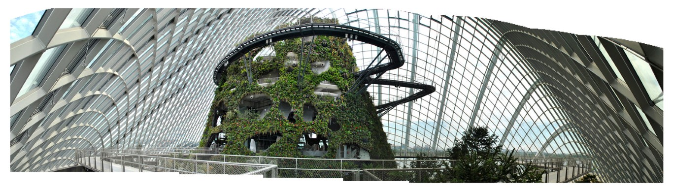 Gardens by the Bay - IGS Magazine - Architecture - Grant Associates - 13