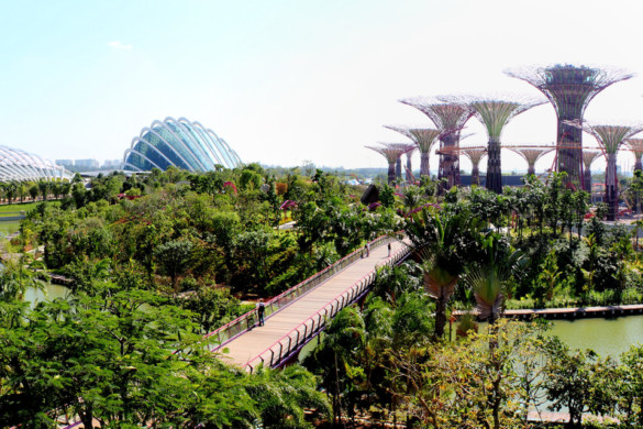Gardens by the Bay - IGS Magazine - Architecture - Grant Associates - 14