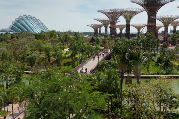 Gardens by the Bay - IGS Magazine - Architecture - Grant Associates - 15