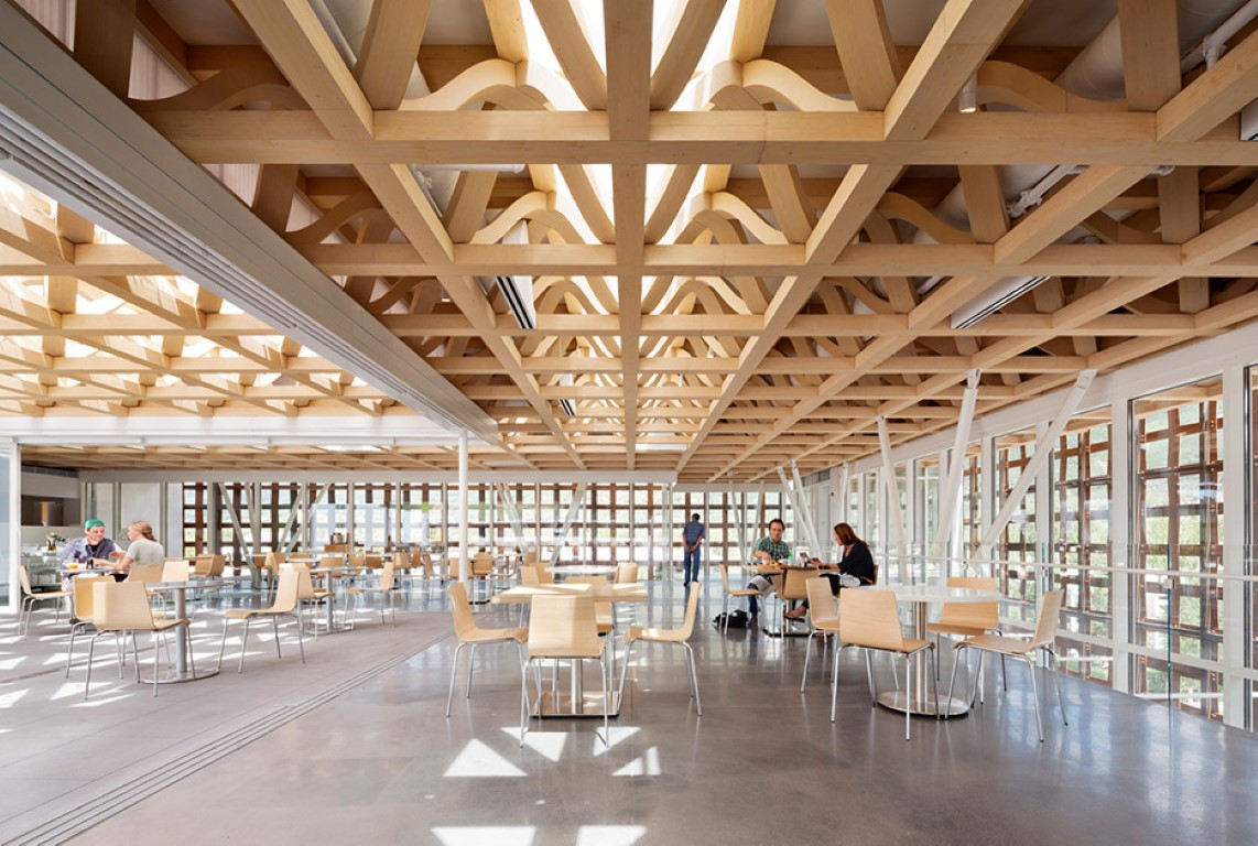 How Mass Timber Is Making Wood Construction Viable Again - Opinion - IGS Magazine - 6