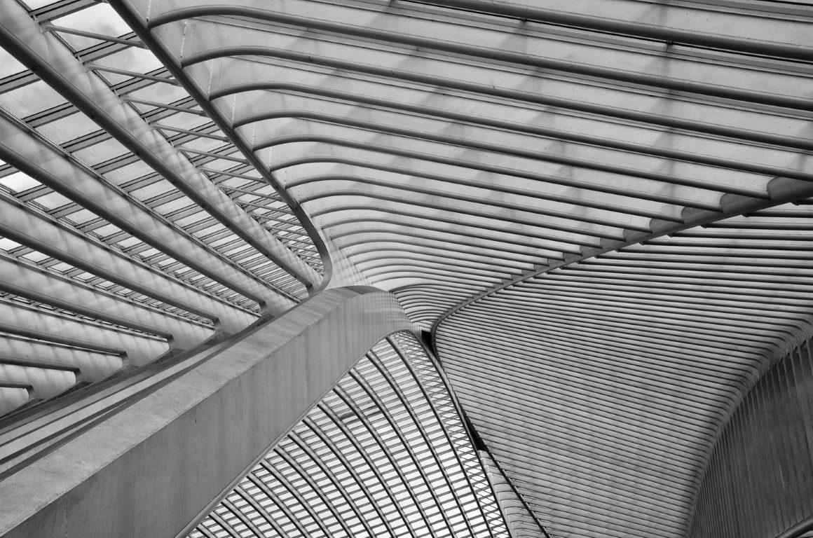 Project: The ceiling of Liège-Guillemins station in Belgium by Santiago CalatravaPhotographer: Suraj Garg